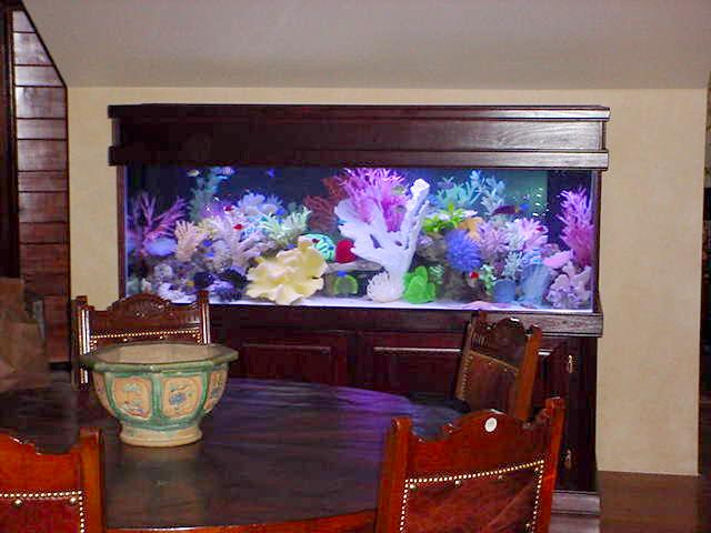 custom aquarium sales NJ